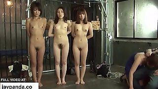Asian stripped increased by punished / javpanda.co